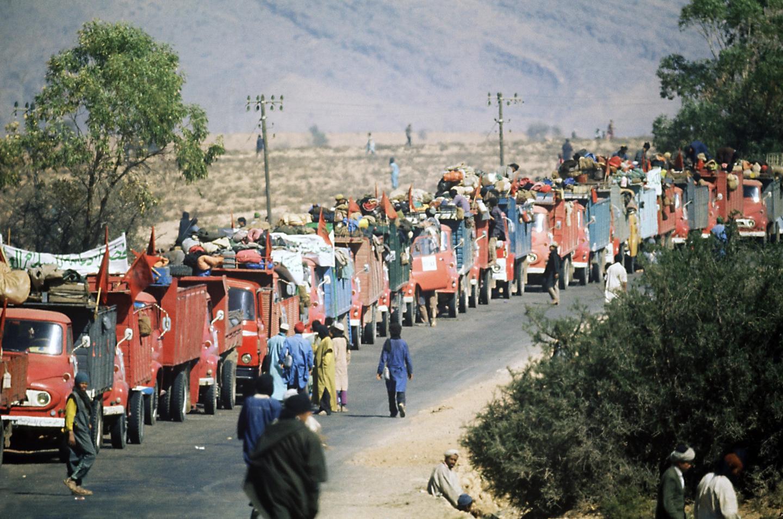 moroccan-volunteers-participate-green-march.