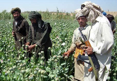Taliban Bans Opium